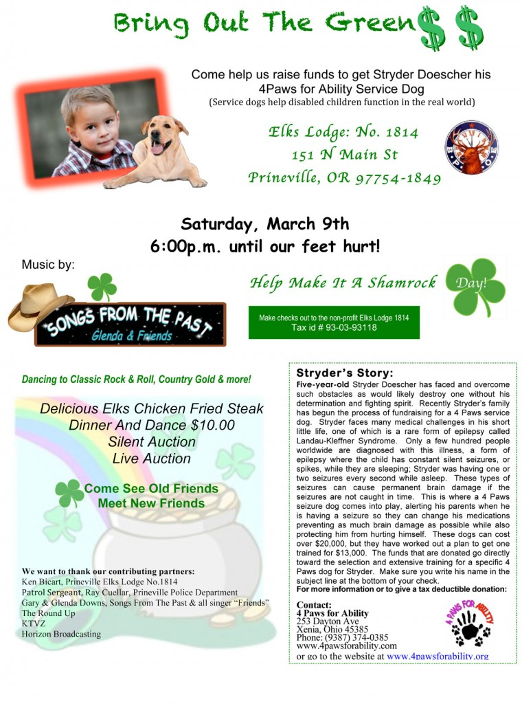Bring-Out-The-Green-Fund-Raiser-flyer